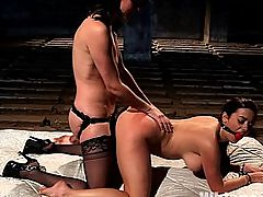 WHIPPED ASS GIRL OF THE MONTH APRIL 2012: The Dark Side Of Taylor Vixen